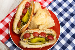 Hot Dogs And Potato Chips On Red Plate Royalty Free Stock Photos