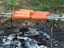 Hot dogs or wieners over the campfire Stock Photography