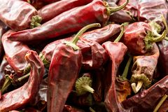 Hot dried red chillies peppers, close up image stock photography