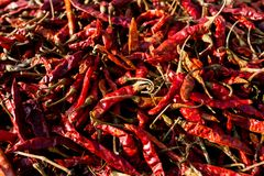 Hot dried red chillies peppers. Traditional mexican cuisine. Healthy vegan food royalty free stock images