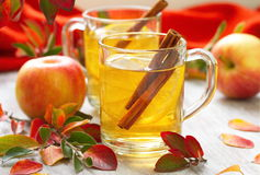 Hot drink with apple juice, lemon and cinnamon in autumn Royalty Free Stock Photography