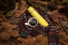 Hot drink in cold weather. Stock Images