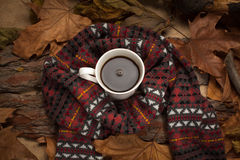Hot drink in cold weather. Royalty Free Stock Photography