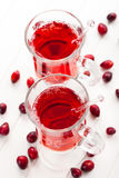 Hot drink with cranberries Stock Photography