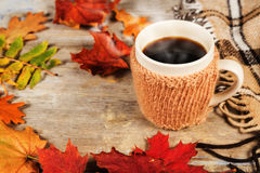 Hot drink in a large cup, colorful autumn leaves Royalty Free Stock Images