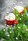 Hot drink marshmallow Christmas decoration pine tree branches. Hot drink with marshmallow and Christmas decoration pine tree branches royalty free stock image