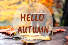 Hot drink in the steel cup on the wooden table. Autumn orange leaves. Hello Autumn text royalty free stock photography