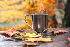 Hot drink in the steel cup on the wooden table. Autumn orange leaves royalty free stock images