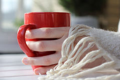 A hot drink in a warm atmosphere Royalty Free Stock Photo