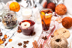 The hot drinks - fruit tea Stock Images