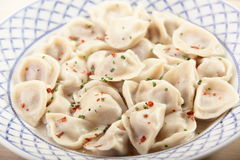 Hot dumplings on the dish Royalty Free Stock Photography