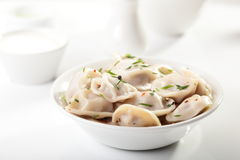 Hot dumplings on the dish Royalty Free Stock Photo