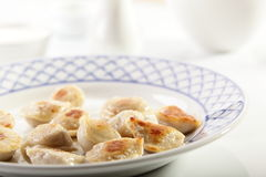 Hot dumplings on the dish Royalty Free Stock Images