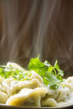 Hot dumplings with steam Stock Images