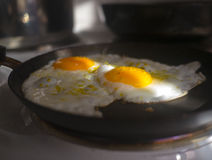 Hot eggs Stock Image