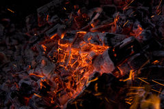 Hot embers. In the fire Royalty Free Stock Images