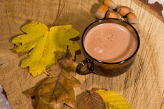 Hot fairtrade cocoa Royalty Free Stock Images