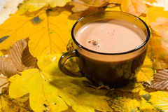 Hot fairtrade cocoa. With background Royalty Free Stock Image