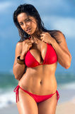 Hot female walking in the beach Stock Images