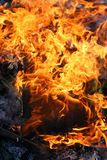 Hot Fire Flames Burning Wood Royalty Free Stock Photos