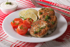 Hot fish cakes with dill close-up on a plate and sauce. horizont Royalty Free Stock Photo