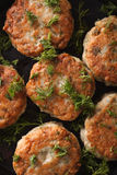 Hot fish cakes with dill macro. vertical top view Stock Images
