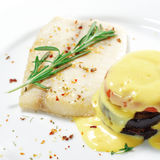 Hot Fish Dishes - Sole with Zucchini Stock Images