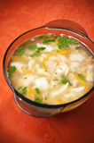 Hot fish soup Stock Image