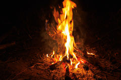 Hot flame of fire Stock Image
