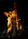 Hot flame of fire in night Royalty Free Stock Photos