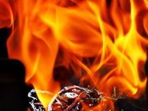 Hot flame. Flame from a group of burnt firewood Royalty Free Stock Image