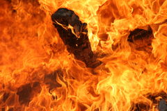 Hot Flames. Roaring flames Stock Images