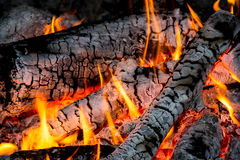 Hot flames of campfire Royalty Free Stock Images