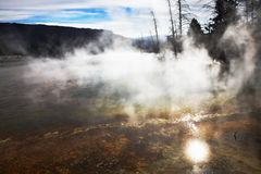Hot fog above geothermal springs Stock Photo