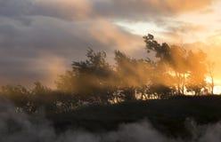 Hot Fog Above Geothermal Springs in backlight Stock Image