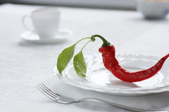 Hot food!. The Red sharp pepper on plate.Amateur sharp Royalty Free Stock Image