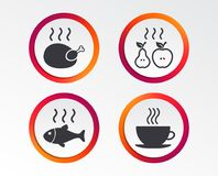 Hot food icons. Grill chicken and fish symbols. Hot coffee cup sign. Cook or fry apple and pear fruits. Infographic design buttons. Circle templates. Vector Stock Photos