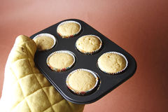 Hot and fresh cupcake Royalty Free Stock Images