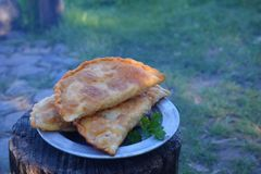 Hot fried chebureks. Fried pasties. Pie with meat and onion, traditional turkish and mongolian dish. Meal cooked outdoors on an. Open fire stock photos