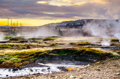 Hot geysers in Iceland. Landscape with steam from geysers at sunset Stock Photography