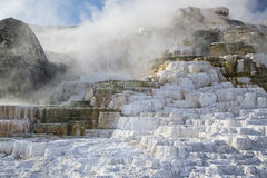 Hot geysers mineral terraces pools steam Royalty Free Stock Photo