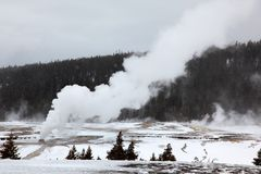Hot geysers in Yellowstone NP Stock Photography