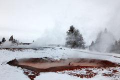 Hot geysers in Yellowstone NP Royalty Free Stock Photography