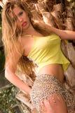 Hot girl Stock Image