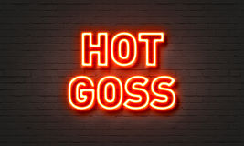 Hot goss neon sign on brick wall background. Royalty Free Stock Photo