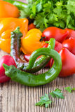 Hot green chili peppers and fresh tomatoes Stock Photo