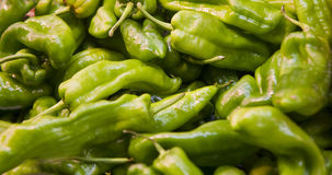 Hot Green Peppers Stock Image