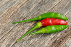 Hot green and red chili or green and red chilli pepper Royalty Free Stock Photos
