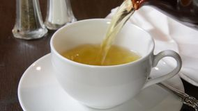 Hot green tea stock video footage