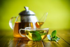 Hot green tea with fresh mint. On a green background royalty free stock image